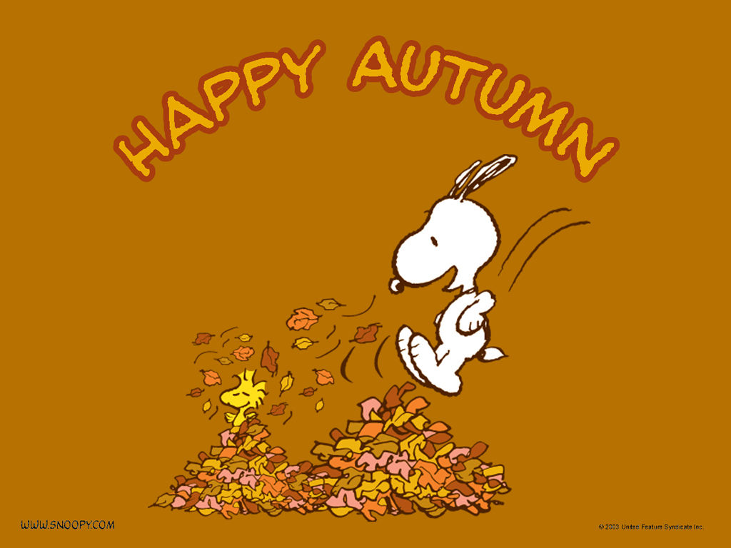 Happy Fall Tumblr 68162 Loadtve