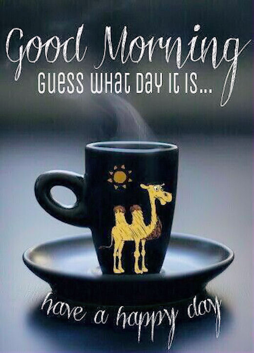 Image result for Good morning, what day is it?