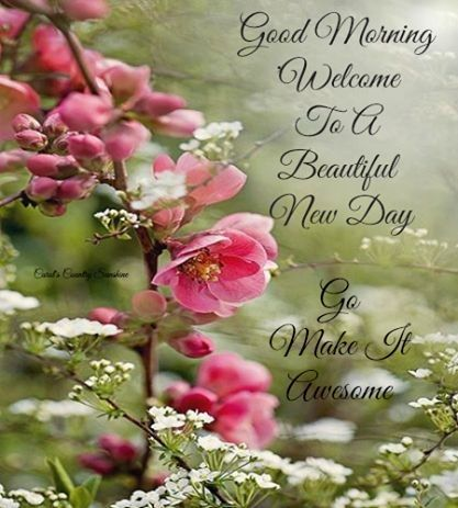 good morning welcome to a new day pictures photos and images for