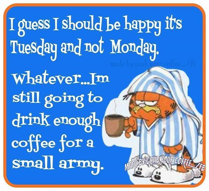 it_Happy Its Tuesday Pictures, Photos, and Images for Facebook, Tumblr, Pinterest, and ...