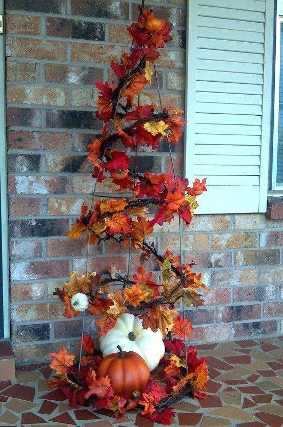 Tomato Cage Fall Tree Pictures Photos And Images For