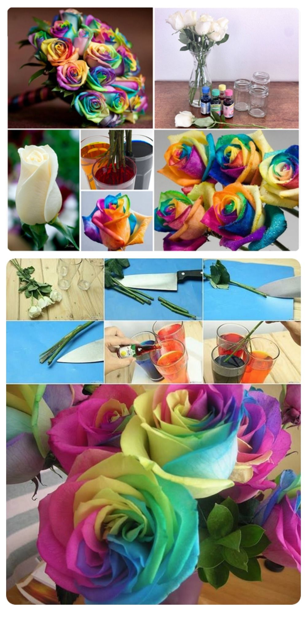 How to make rainbow flowers pictures photos and images for How to make a multicolored rose