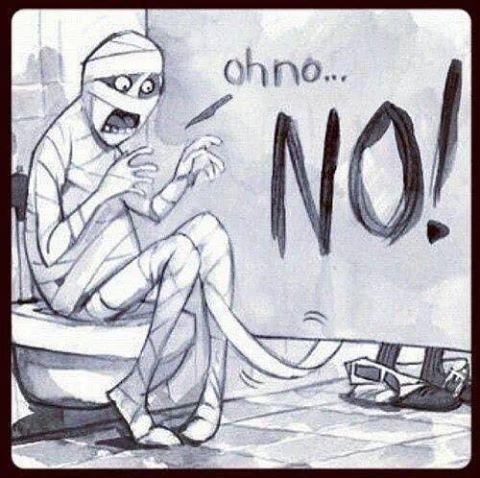 135754-Mummy-Toilet-Paper.jpg