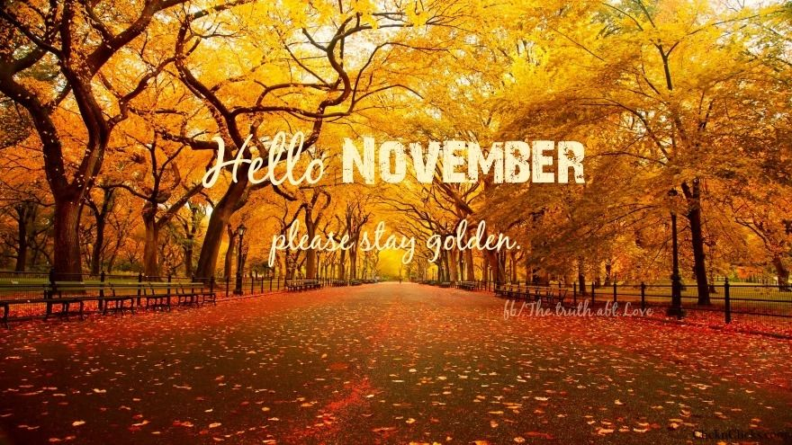 Hello November Pictures Photos And Images For Facebook Tumblr Pinterest And Twitter