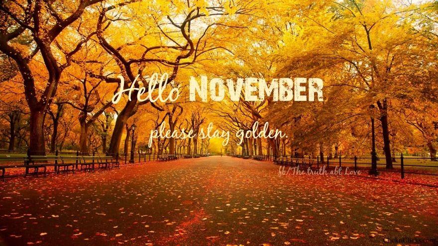 Merveilleux Hello November
