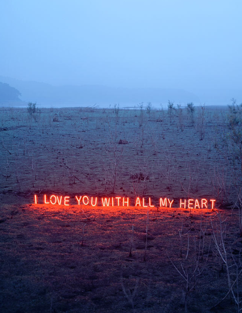 I Love You With All My Heart Quotes Interesting I Love You With All My Heart Pictures Photos And Images For