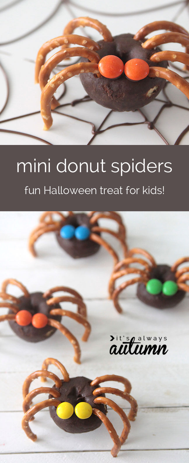 Mini Donut Spiders Pictures Photos And Images For