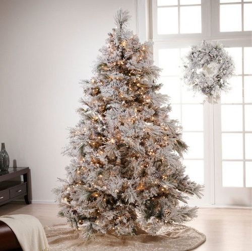 Christmas Tree White Lights.White Light Christmas Tree Pictures Photos And Images For