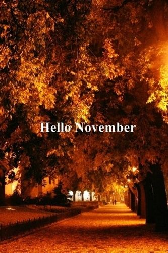 Hello November Pictures Photos And Images For Facebook Tumblr Pinterest Twitter