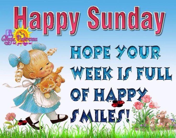 Happy Sunday | Happy sunday quotes, Happy sunday, Sunday