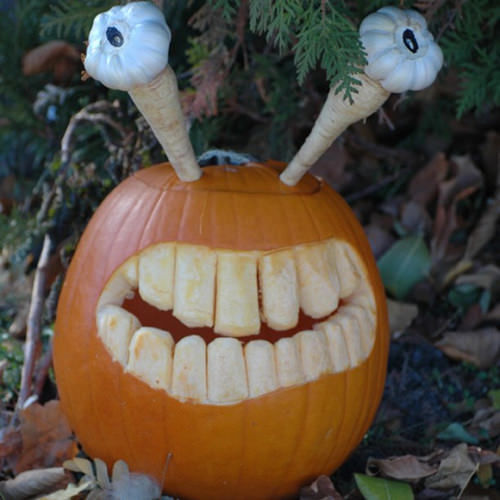 Crazy Jack O Lantern Pictures Photos And Images For