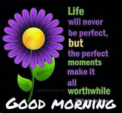 Good Morning Quotes For Facebook Entrancing Good Morning Life Quote Pictures Photos And Images For Facebook