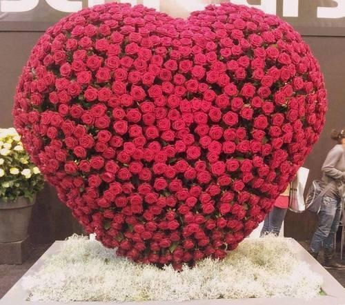 Heart Rose Bouquet Pictures Photos And Images For Facebook Tumblr
