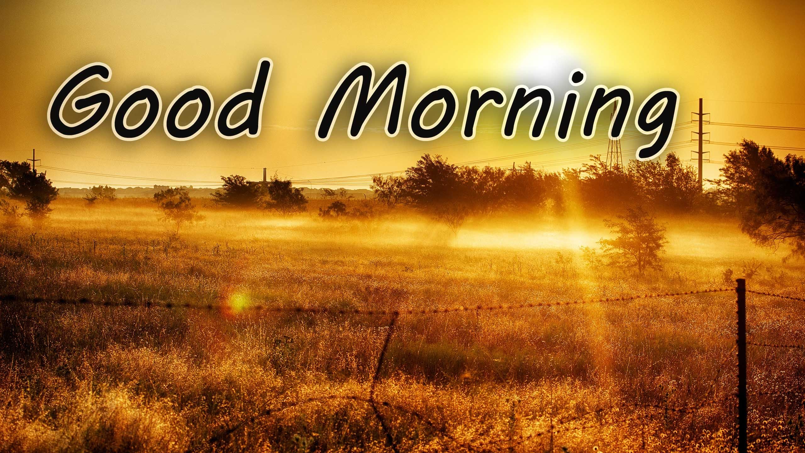 Good Morning Sunrise Pictures, Photos, And Images For