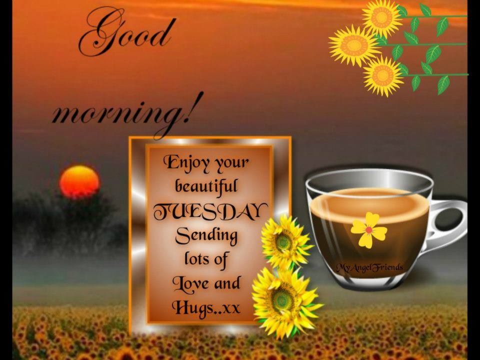 Good Tuesday Morning Images good morning enjoy your beautiful tuesday