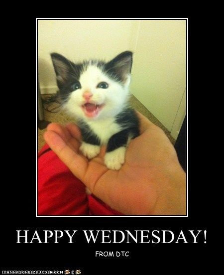 Happy Wednesday Pictures, Photos, and Images for Facebook ...