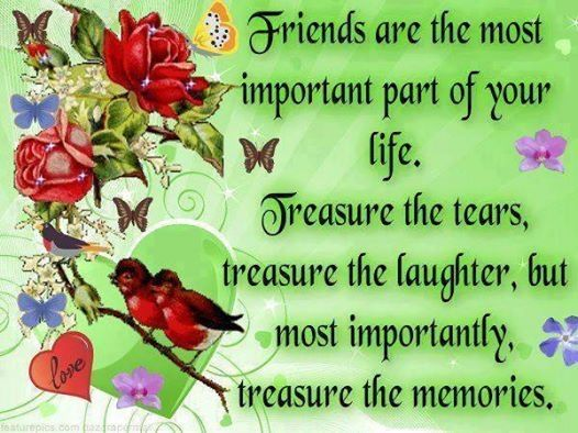 why are friends important Friends are the ones who play a very important role in a person's ordinary life it is said that a friend in need is a friend indeed friends are those who.