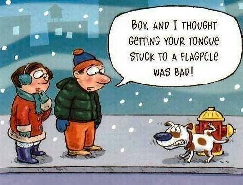 Winter Humor Pictures, Photos, And Images For Facebook