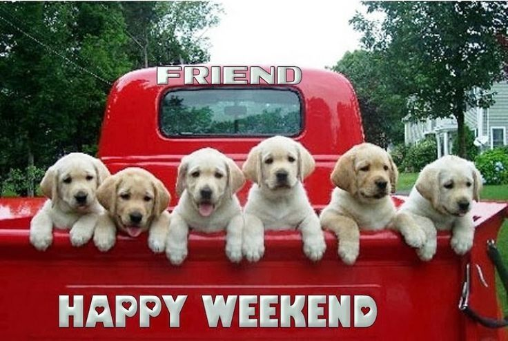 http://www.lovethispic.com/uploaded_images/139576-Happy-Weekend.jpg