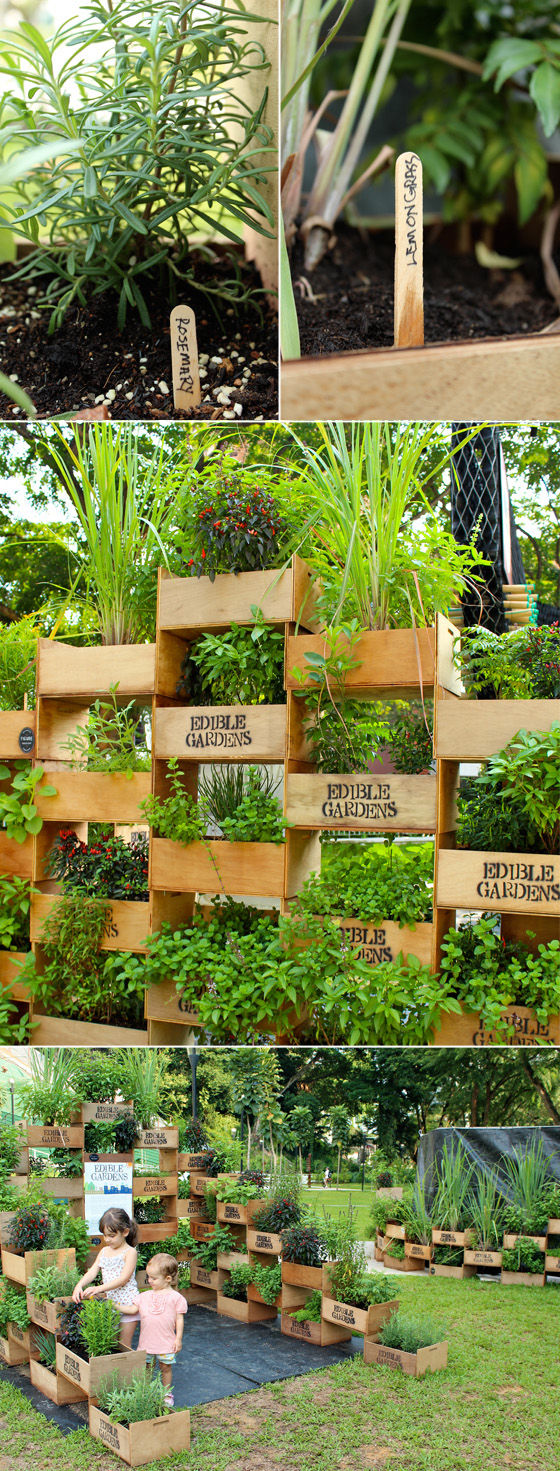 DIY Box Garden Idea Pictures Photos and Images for Facebook
