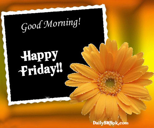 Good Morning And Happy Sunday Sms : Good morning happy friday pictures photos and images for