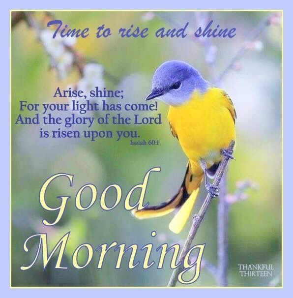 Good Morning Rise And Shine In German : Good morning rise and shine pictures photos images