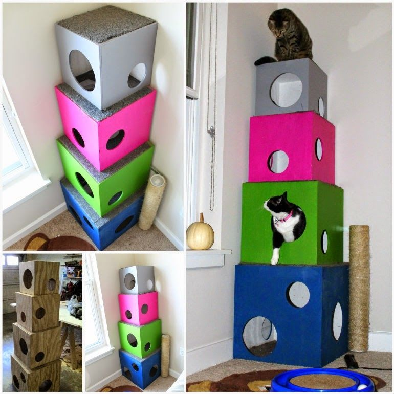 How to make a diy cat tree pictures photos and images for How to make a cat tower