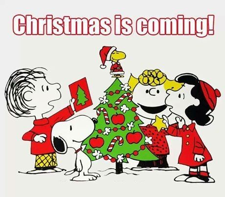 Christmas Is Coming Pictures Photos And Images For