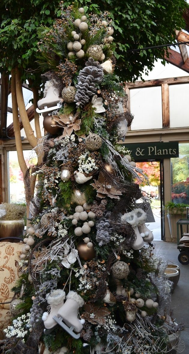 Friends Quote: Rustic Christmas Tree Pictures, Photos, And Images For