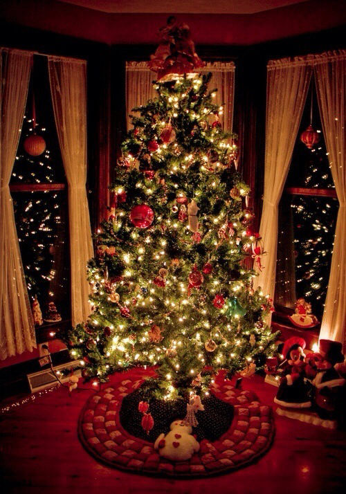 Christmas tree at night pictures photos and images for - Site americain decoration noel ...