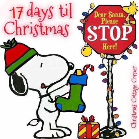 17 Days Until Christmas Pictures, Photos, and Images for ...