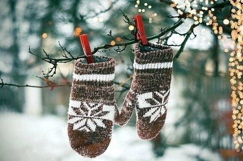 mittens hanging from tree br pictures  photos  and images