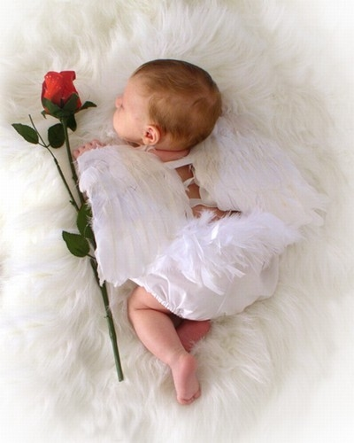 Precious Baby Angel Pictures, Photos, and Images for Facebook ...