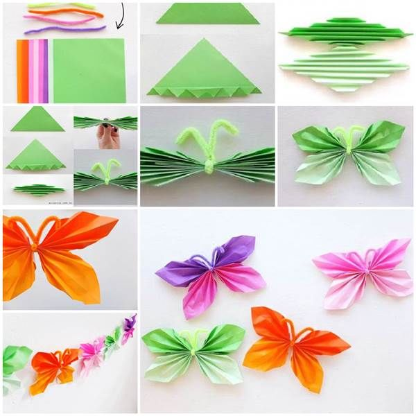 paper butterfly pictures   images