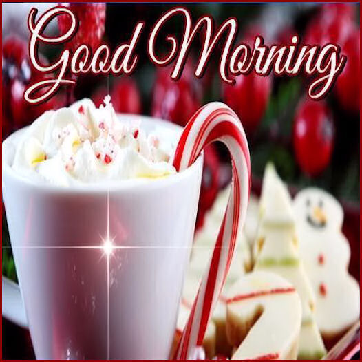 Christmas Good Morning Quotes: Christmas Good Morning Pictures, Photos, And Images For