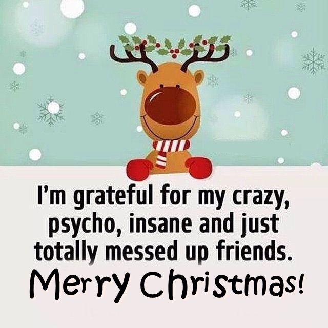 Merry Christmas Crazy Friends Pictures, Photos, and Images for ...