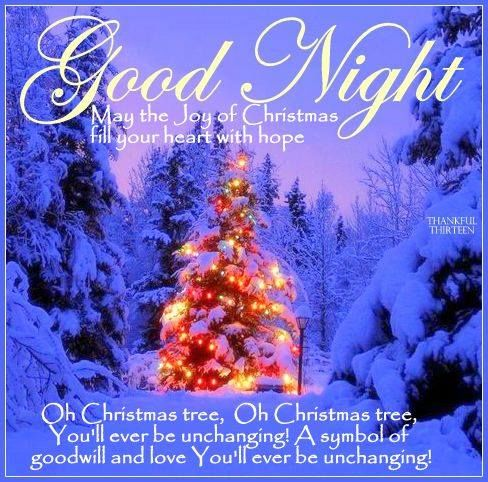 Good Night Joy Of Christmas Pictures, Photos, and Images for ...