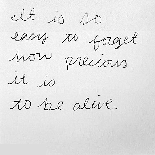 Life Is Precious Quotes Life Is Precious Pictures, Photos, and Images for Facebook, Tumblr  Life Is Precious Quotes