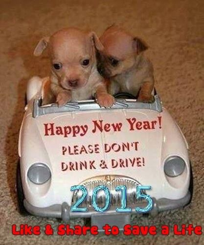 happy new year dont drink and drive