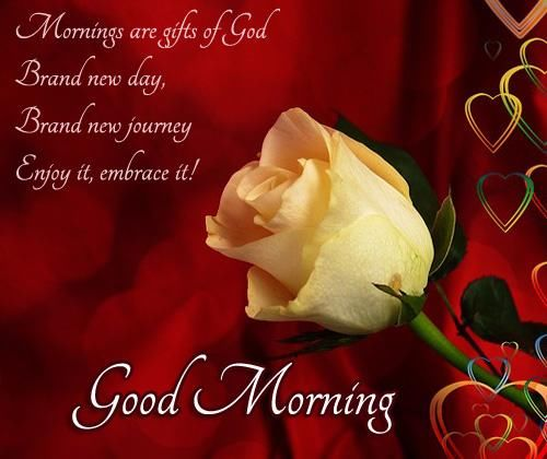 Mornings are gifts of godgood morning pictures photos and mornings are gifts of godgood morning negle