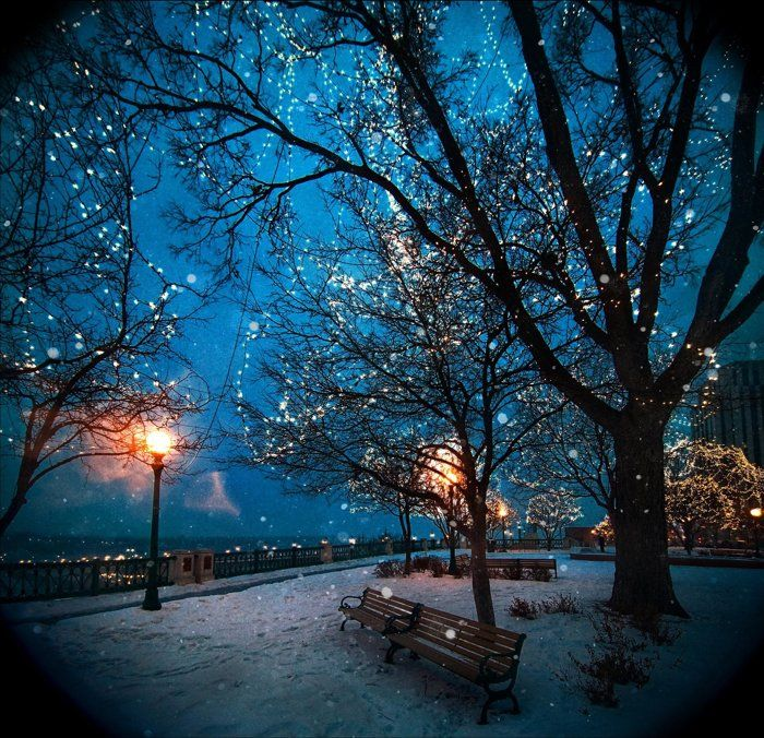 Beautiful winter night pictures photos and images for Beautiful snowfall pictures