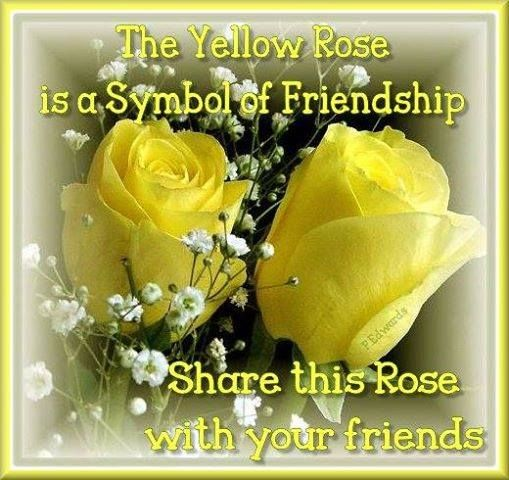 Beautiful Flowers Images With Friendship Quotes: Friendship Rose Quote Pictures, Photos, And Images For