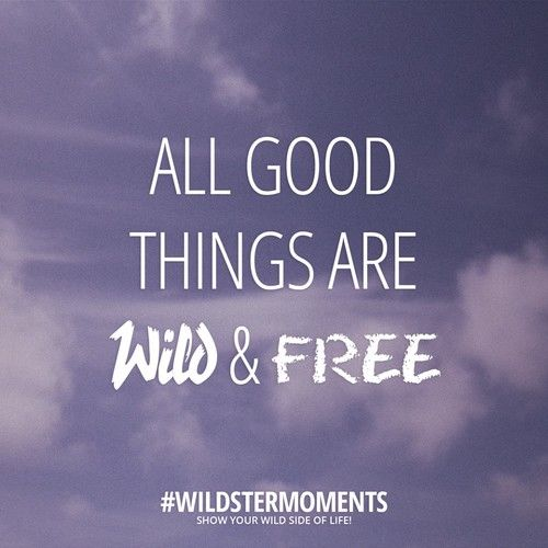 Young Wild And Free Quotes Tumblr: ALL GOOD THINGS ARE WILD & FREE Pictures, Photos, And