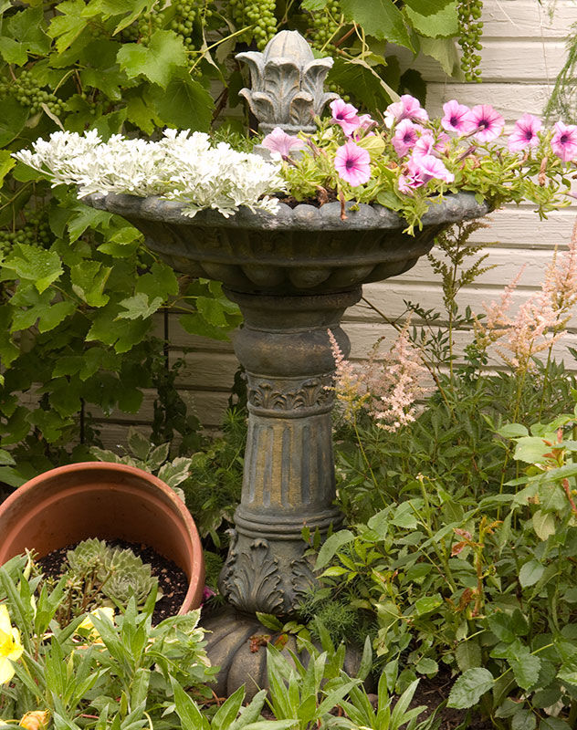Birdbath As A Flower Planter Pictures Photos And Images
