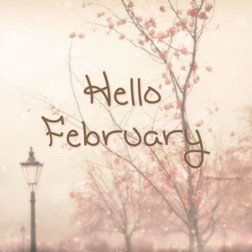 Pictures Images On Pinterest: Hello February Pictures, Photos, And Images For Facebook