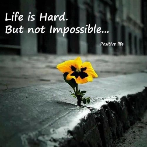 Life is hard. But not impossible