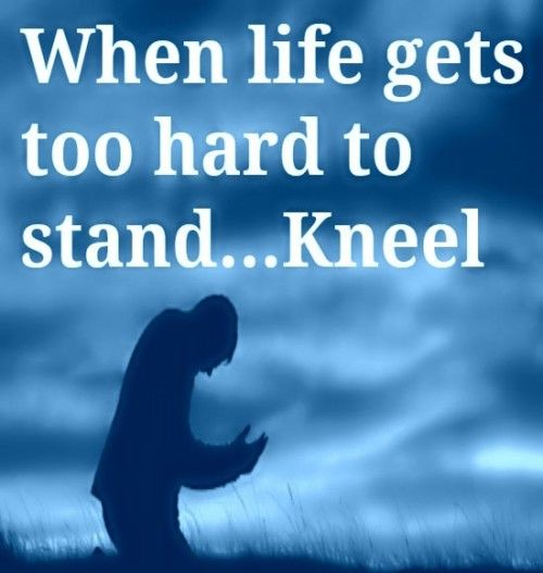 When Life Gets Too Hard To Stand…Kneel Pictures, Photos ...