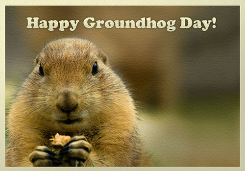 Happy Groundhog Day Pictures, Photos, And Images For