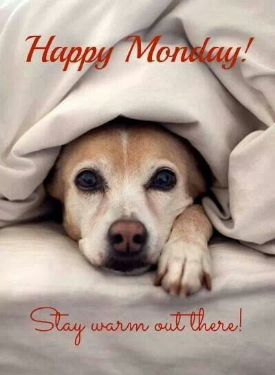 Happy Monday Related Keywords & Suggestions - Happy Monday Long Tail ... Wednesday Coffee Quotes