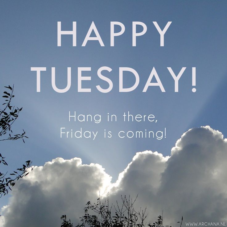 Happy Tuesday Hang In There Pictures, Photos, and Images ...